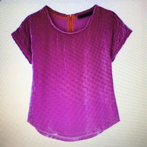Zara hot pink velvet top